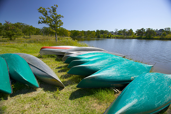 Canoes on Turtle Lake